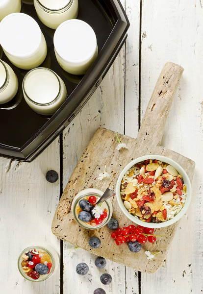 Recettes yaourtière cuisinart